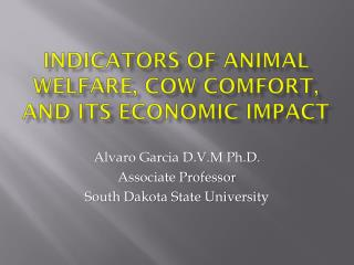 Indicators of animal welfare, cow comfort, and its economic impact