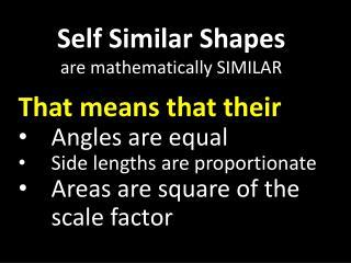 Self Similar Shapes are mathematically SIMILAR