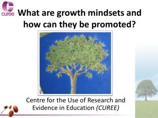 What are growth mindsets and how can they be promoted?