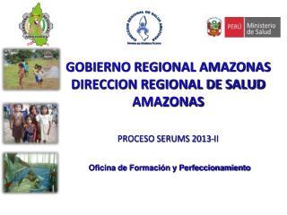 GOBIERNO REGIONAL AMAZONAS DIRECCION REGIONAL DE SALUD AMAZONAS PROCESO SERUMS 2013-II
