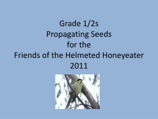 Grade 1/2s Propagating Seeds  for the  Friends of the Helmeted Honeyeater 2011