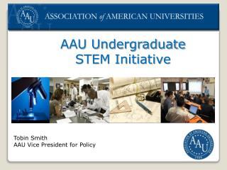 AAU Undergraduate  STEM Initiative