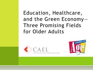 Education, Healthcare, and the Green Economy—Three Promising Fields for Older Adults