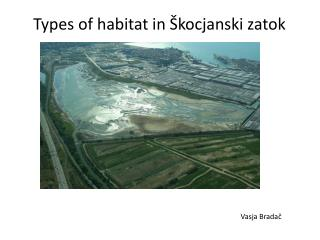Types of  habitat in �kocjanski zatok
