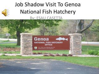 Job Shadow Visit To Genoa National Fish Hatchery
