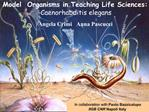 Model  Organisms in Teaching Life Sciences:  Caenorhabditis elegans