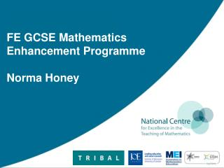 FE GCSE Mathematics Enhancement Programme Norma Honey