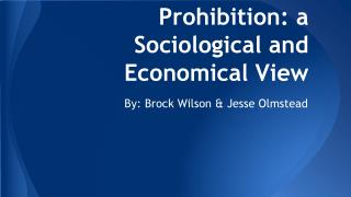 Prohibition: a Sociological and Economical View