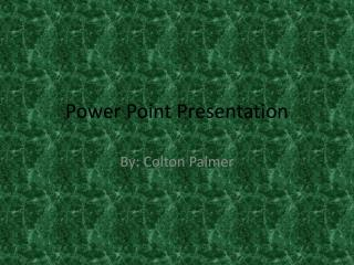 Power Point  Presentation