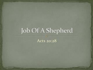 Job Of A Shepherd