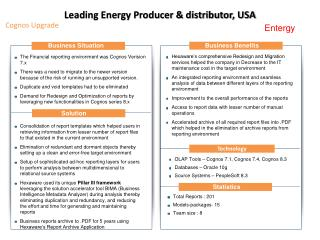 Leading Energy Producer & distributor, USA