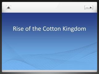 Rise of the Cotton Kingdom