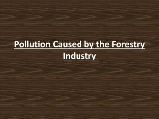 Pollution Caused by the Forestry Industry
