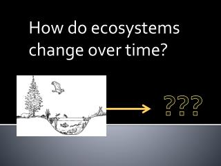 How do ecosystems change over time?
