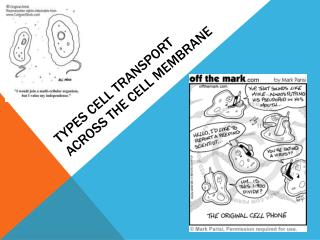Types Cell transport across the cell membrane
