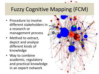 Fuzzy Cognitive Mapping (FCM)