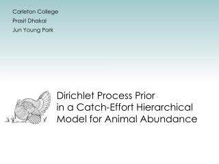 Dirichlet Process Prior  in a Catch-Effort Hierarchical Model for Animal Abundance