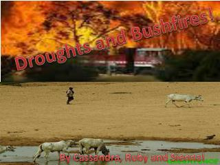 Droughts and Bushfires!