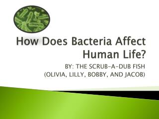 How Does  B acteria  A ffect  H uman  L ife?