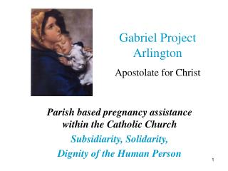 Parish based pregnancy assistance within the Catholic Church Subsidiarity, Solidarity,  Dignity of the Human Person