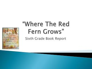 where the red fern grows book report Book reports essays: where the red fern grows red fern grows this essay where the red fern grows and other in red lantern red badge of courage book report.