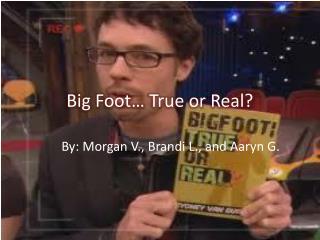 Big Foot… True or Real?