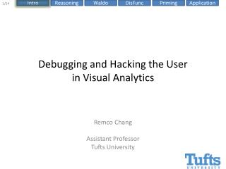 Debugging and Hacking the User  in Visual Analytics