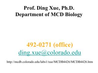 Prof. Ding Xue, Ph.D.  Department of MCD Biology