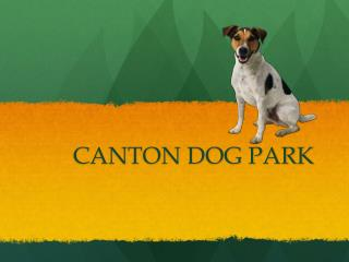CANTON DOG PARK