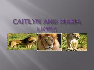 Caitlyn and maria lions