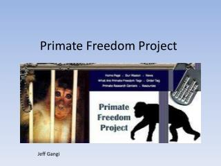 Primate Freedom Project