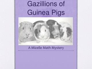 Gazillions of Guinea Pigs