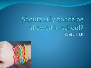 Should silly bandz be allowed in school?