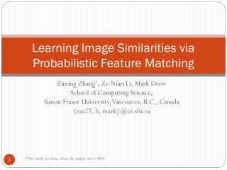 Learning Image Similarities via Probabilistic Feature Matching