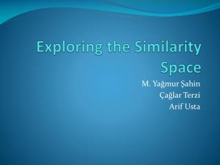 Exploring the Similarity Space