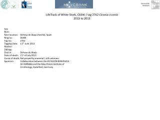 LifeTrack  of White Stork, C64W / tag 2762  Ciconia ciconia 2013  to 2013