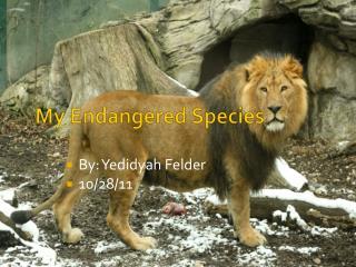 My Endangered Species