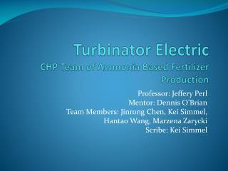 Turbinator  Electric CHP Team of Ammonia Based Fertilizer Production