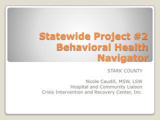 Statewide Project #2 Behavioral Health Navigator