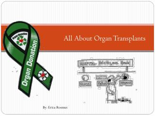 All About Organ Transplants