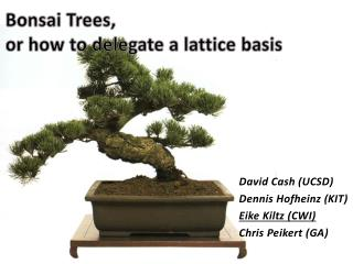 Bonsai Trees, or how to delegate a lattice basis