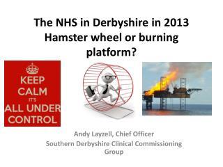 The NHS in Derbyshire in 2013 Hamster wheel or burning platform?