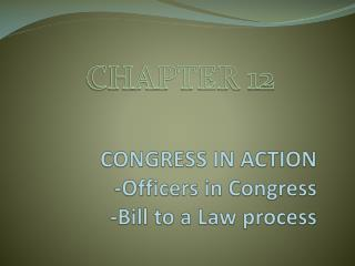CONGRESS IN ACTION -Officers in Congress -Bill to a Law process