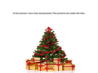 In this picture I see a tree and presents .The presents are under the tree.