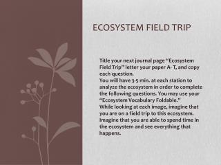 Ecosystem Field trip