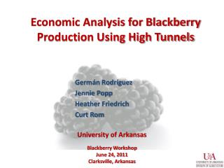 Economic Analysis for Blackberry Production Using High Tunnels