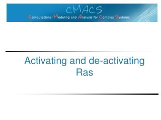 Activating and de-activating  Ras