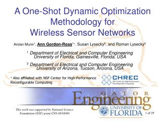 A One-Shot Dynamic Optimization Methodology for  Wireless Sensor Networks