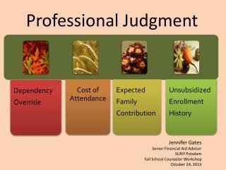 Professional Judgment
