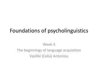 Foundations of psycholinguistics